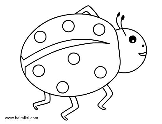 ladybug coloringpage