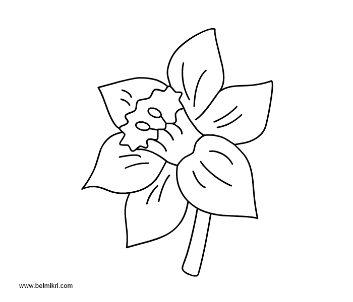 Printable coloring pages dot the dot